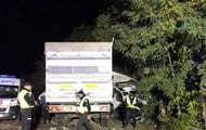 An accident with a minibus happened on the Kiev-Odessa highway, people died