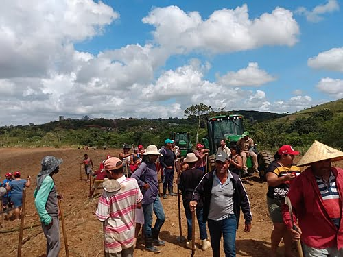 Farming families accuse plant of invading and destroying plantation in Greater Recife (PE)