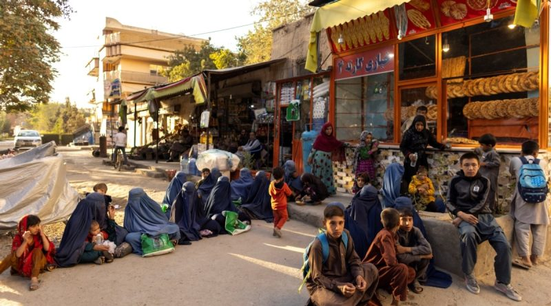"""""""We had to sell our daughter"""": massive famine in Afghanistan"""